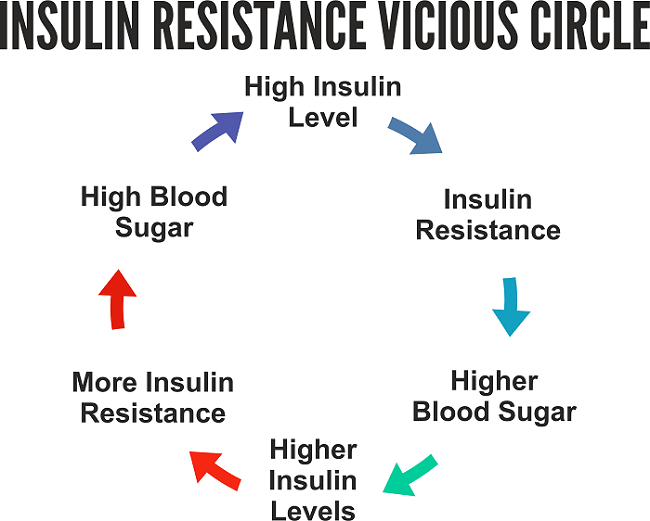 insulin resistance vicious circle