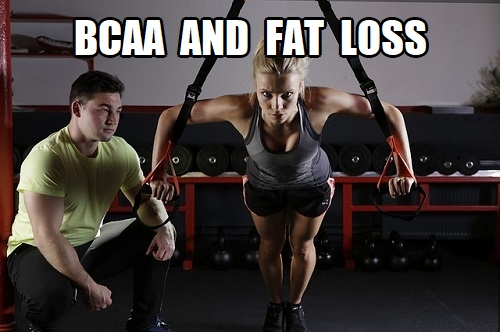 do bcaas work