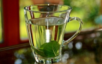 Does Peppermint Tea Break a Fast?