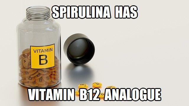 spirulina b12